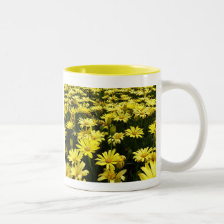 Field of Daisies coffee cup