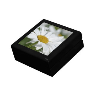 Field of Daisies Gift Boxes