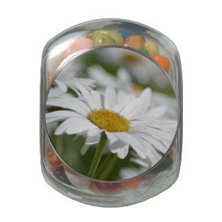 Field of Daisies Glass Jar