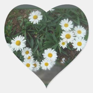 Field of Daisies Heart Sticker