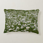 Field of Daisies Nature Photo Accent Pillow
