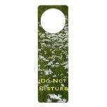 Field of Daisies Nature Photo Door Hanger