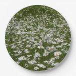 Field of Daisies Nature Photo Paper Plate
