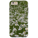 Field of Daisies Nature Photo Tough iPhone 6 Plus Case