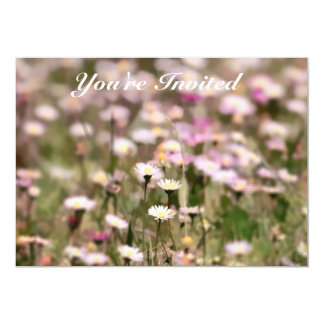 "Field of Daisies Photo 5"" X 7"" Invitation Card"