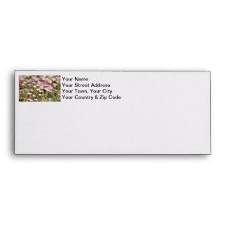 Field of Daisies Photo Envelopes