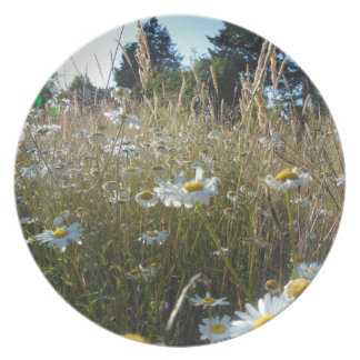Field of Daisies Plate