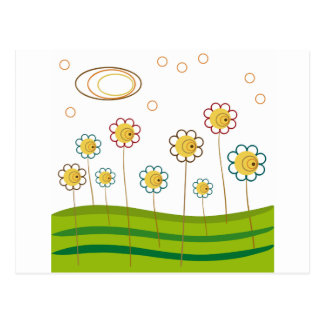 field of daisies post card