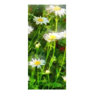 Field of Daisies Rack Card