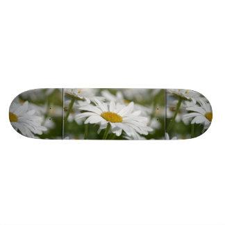 Field of Daisies Skate Board Decks