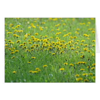Field of Dandelions. Stationery Note Card