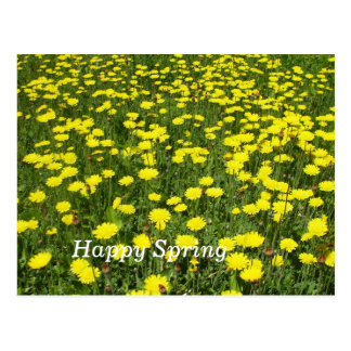 Field of Dandelions Postcard