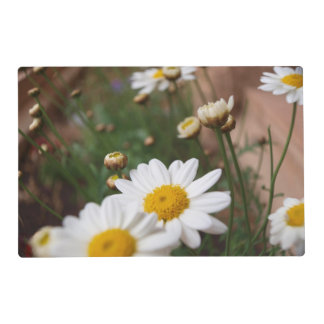 Field of Dasies Placemat