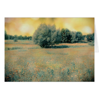 Field of dreams card