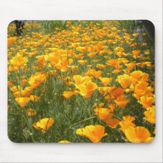 Field of Dreams Mouse Pad