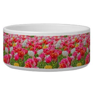 Field of Flowers Bowl