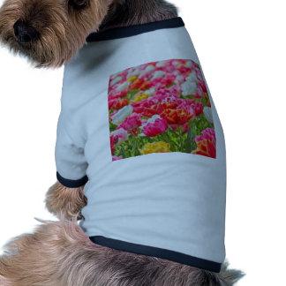 Field of Flowers Doggie Shirt
