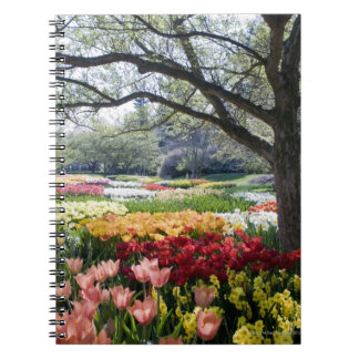 Field of flowers on a Spring morning Notebook