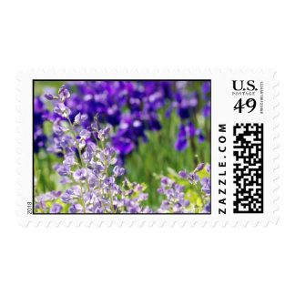 Field of Flowers Postage