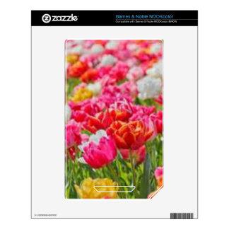 Field of Flowers NOOK Color Decals