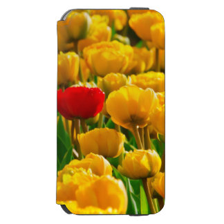 Field Of Flowers With Red And Yellow Tulips iPhone 6/6s Wallet Case