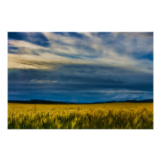 Field of Golden Grasses Posters