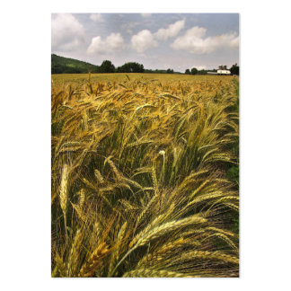 Field of Grain ATC Business Cards