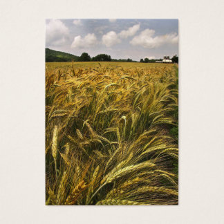 Field of Grain ATC Business Card
