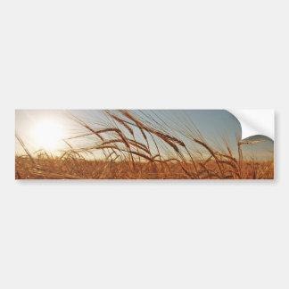 Field of Grain Bumper Sticker