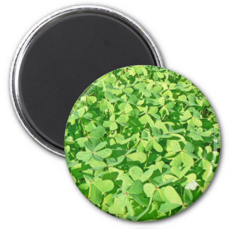 Field of green Clover leaves 2 Inch Round Magnet