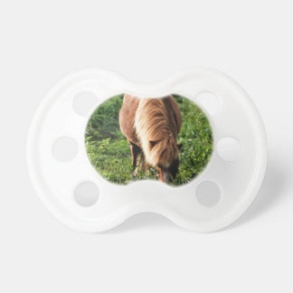 Field of happiness pacifier