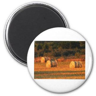 Field of hay magnet