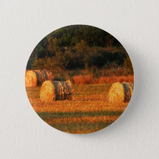 Field of hay pinback button