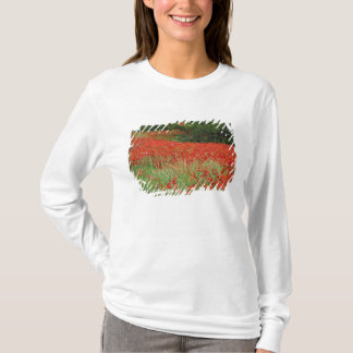 Field of hybrid poppy flowers planted along T-Shirt