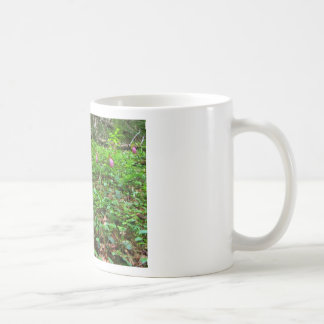 Field of Ladyslippers Classic White Coffee Mug