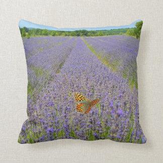 Field of lavender - Campo de lavanda - Mariposa Almohada