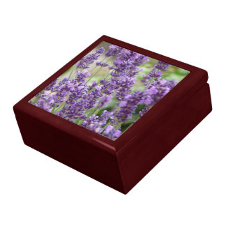 Field of Lavender Flowers Gift Box