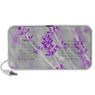 Field of Lavender Speakers