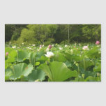Field of Lotus Flowers Rectangular Sticker
