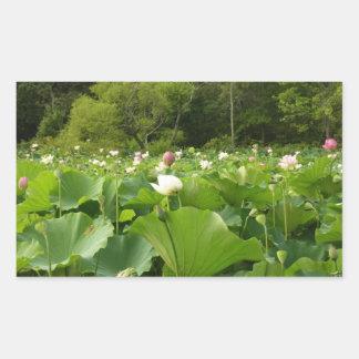 Field of Lotus Flowers Sticker