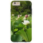 Field of Lotus Flowers Tough iPhone 6 Plus Case