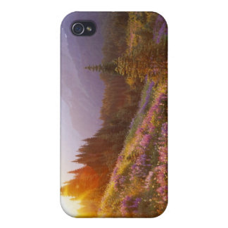 Field of lupine and Olympic Mountains at iPhone 4 Case