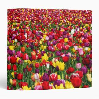 Field of multicolored tulips binder