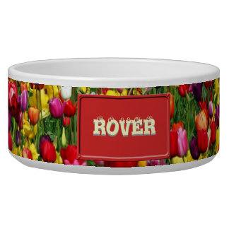 Field of multicolored tulips dog food bowl