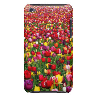 Field of multicolored tulips iPod touch covers