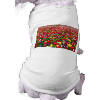 Field of multicolored tulips shirt