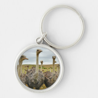 Field of Ostriches Silver-Colored Round Keychain