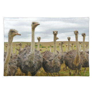 Field of Ostriches Placemat