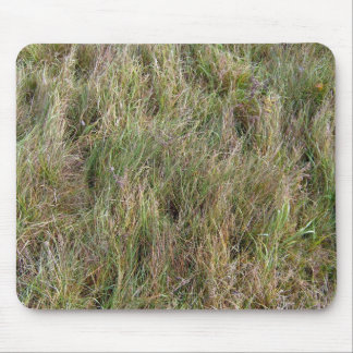 Field of Partial Dry Grass Mouse Pad