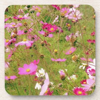 Field Of Pink Flowers Drink Coaster